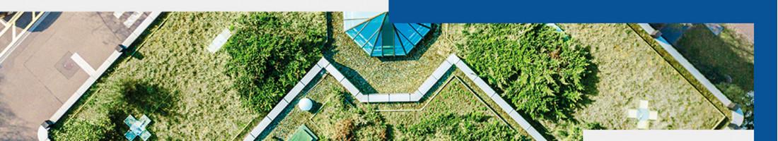 Toiture terrasse jardin & végétalisée